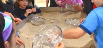 FISH Course- Hatchling Marine Biologist