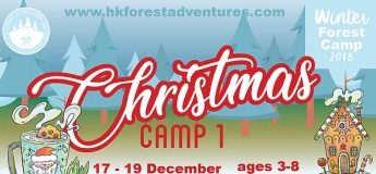 Winter Forest Camps