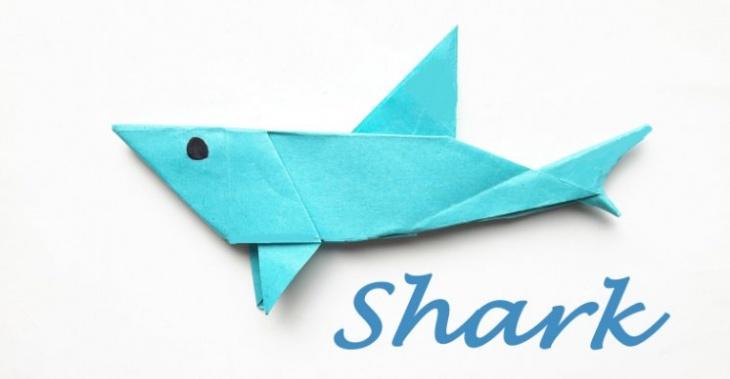 Shark Origami Tickikids Hong Kong