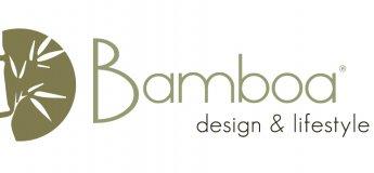 Bamboa workshop